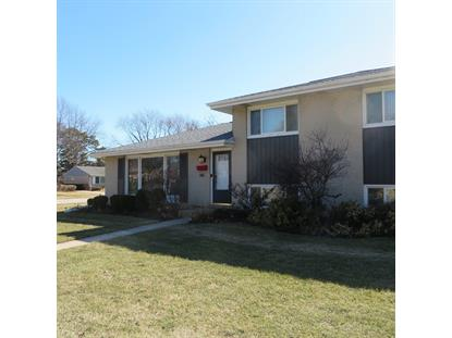 146 Michael Manor  Glenview, IL MLS# 09916201