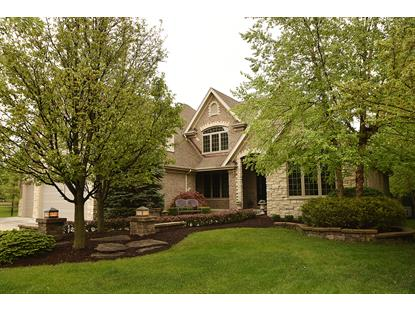 17243 Buck Drive, Orland Park, IL