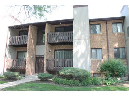 320 Sheridan Drive, Willowbrook, IL
