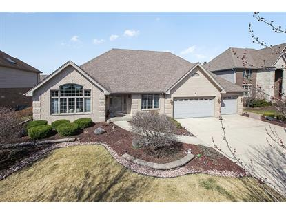 17202 White Deer Circle, Orland Park, IL