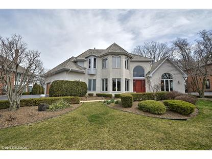 14661 Crystal Tree Drive, Orland Park, IL