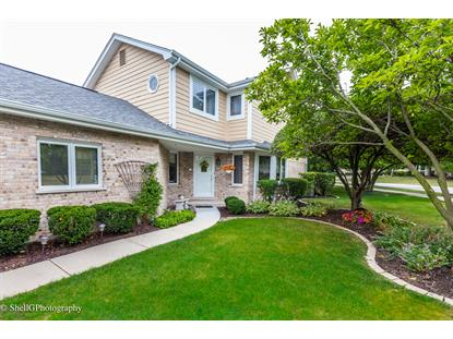 17369 Brook Crossing Court, Orland Park, IL