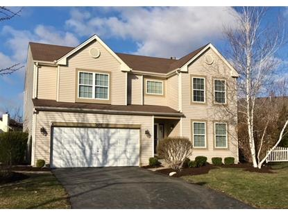 2007 Ashbrook Court, Plainfield, IL