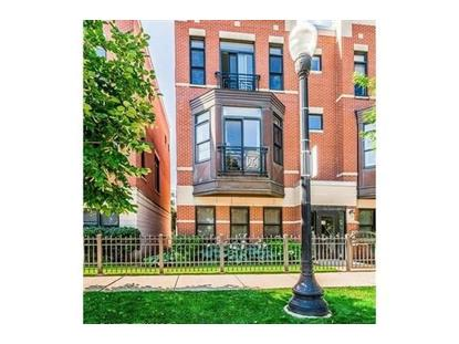 943 W 14th Place Chicago, IL MLS# 09927348