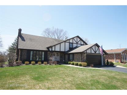 1103 E Carpenter Drive Palatine, IL MLS# 09930838