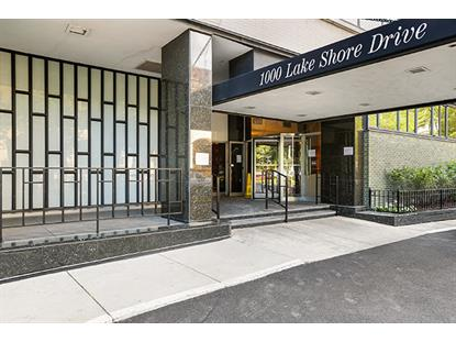 1000 N Lake Shore Drive Chicago, IL MLS# 09936405