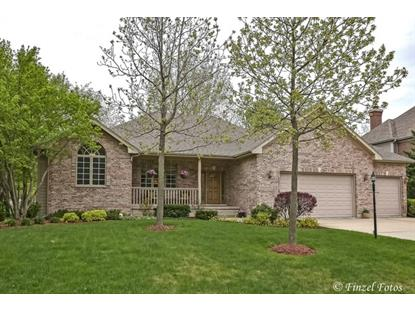 8711 Shade Tree Circle, Lakewood, IL