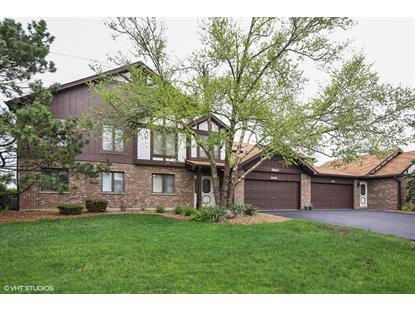 9844 TERRACE Court, Palos Park, IL