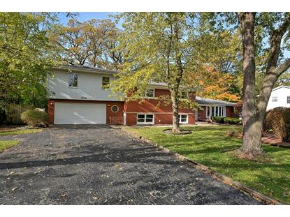 2716 Chariot Lane, Olympia Fields, IL