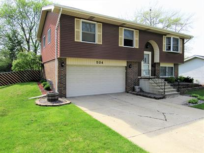 524 S Warrington Road, Des Plaines, IL