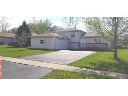 899 Meadowbrook Road, Elwood, IL