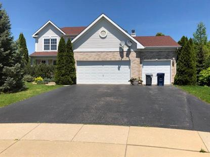 12 Winding Canyon Court Algonquin, IL MLS# 09958774