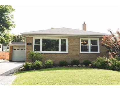 509 S Mitchell Avenue, Arlington Heights, IL