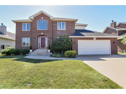 850 Pheasant Lane, Coal City, IL