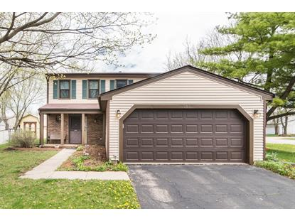 585 Dover Drive, Roselle, IL