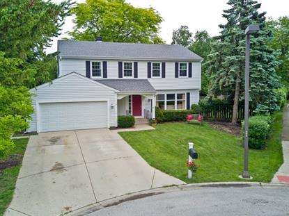 203 Crabtree Lane Vernon Hills, IL MLS# 09983683