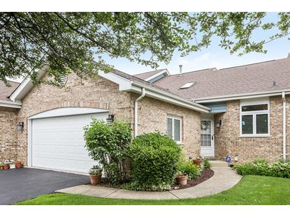17323 Brook Crossing Court, Orland Park, IL