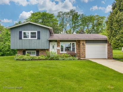 1309 Easy Street, Glendale Heights, IL