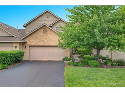 9134 Mansfield Drive, Tinley Park, IL