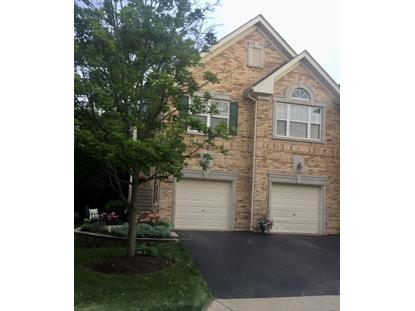 1250 S Christine Court Vernon Hills, IL MLS# 09998093