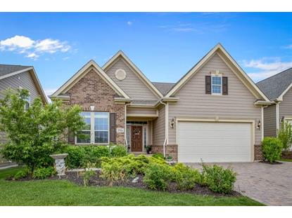 3916 Ridge Pointe Drive Geneva, IL MLS# 10000097