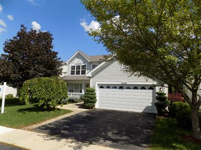 14163 S LAKERIDGE Drive Plainfield, IL MLS# 10049227