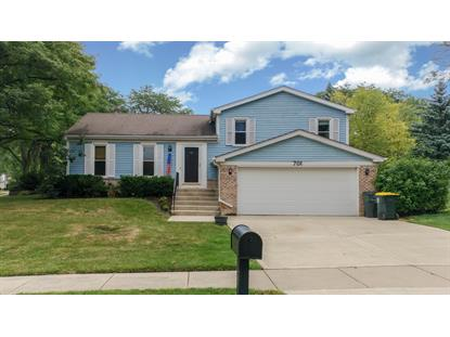 701 Buffalo Circle, Carol Stream, IL