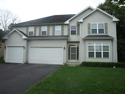 55 Whispering Oaks Lane Grayslake, IL MLS# 10066391