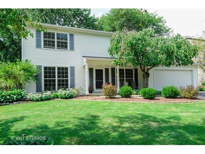 1717 Fender Road Naperville, IL MLS# 10068439