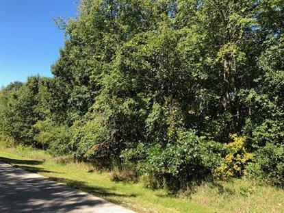 Lot 7 Scotch Heather Lane Elkhorn, WI MLS# 10082427