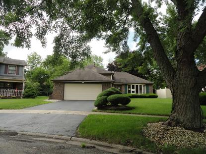 Address not provided Homewood, IL MLS# 10083133