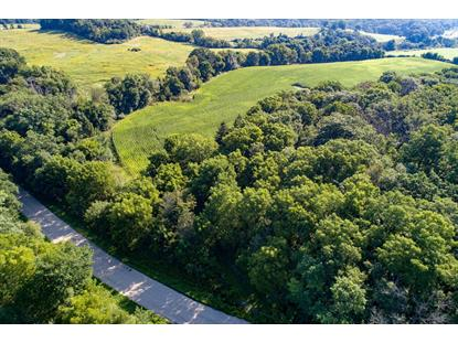 5401 Knobs Road Spring Green, WI MLS# 10089834