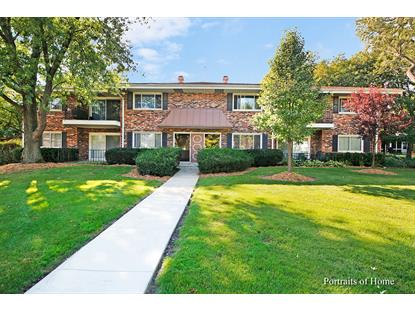 34 N Parkside Avenue, Glen Ellyn, IL