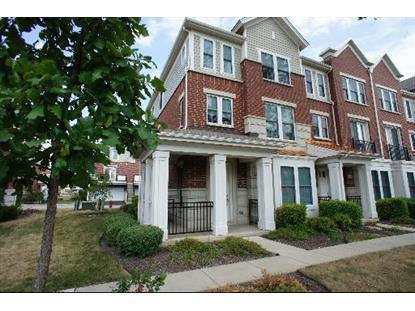 2220 S CRAMBOURNE Way, Arlington Heights, IL