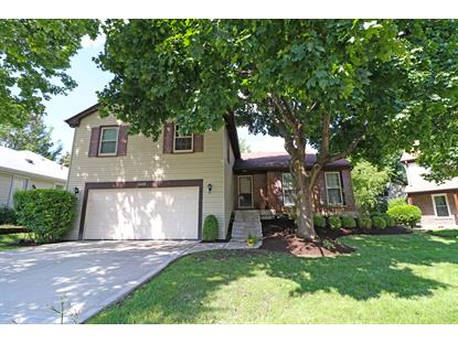 1449 Chase Court Buffalo Grove, IL MLS# 10120367