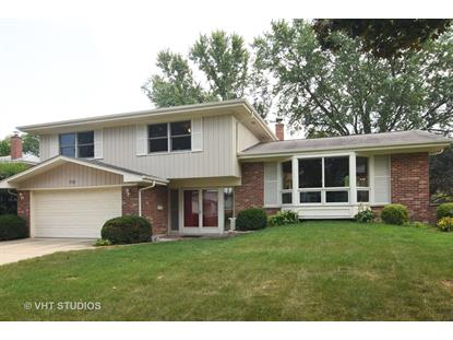 719 E Ivy Lane Arlington Heights, IL MLS# 10130175