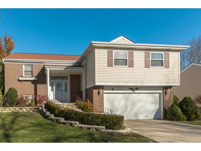 8 Lindon Lane Vernon Hills, IL MLS# 10132623