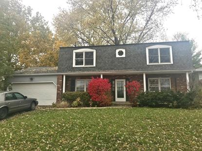 6230 Stonewall Avenue Downers Grove, IL MLS# 10134949