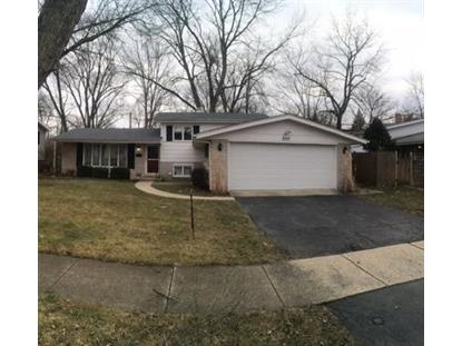 2317 W CLYDE Terrace Homewood, IL MLS# 10144216
