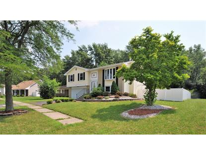 21727 Richmond Road Matteson, IL MLS# 10146454