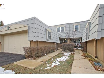 655 VERSAILLES Circle Elk Grove Village, IL MLS# 10155750