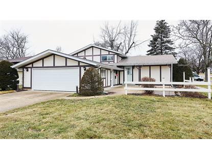 4516 Florence Avenue Downers Grove, IL MLS# 10162898