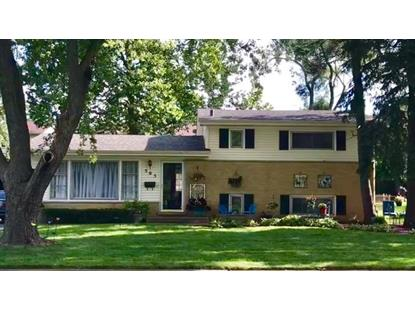 505 E Highland Avenue Mount Prospect, IL MLS# 10171541