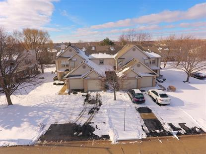 1608 GROVE Avenue Schaumburg, IL MLS# 10173049