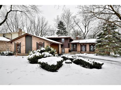 8111 Winter Circle Drive Downers Grove, IL MLS# 10251986