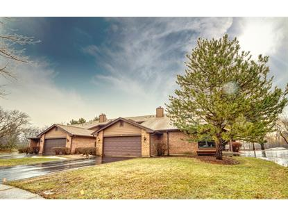 9 Indian Trail Drive Westmont, IL MLS# 10267411