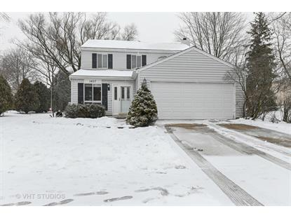 1407 CANYON RUN Road Naperville, IL MLS# 10269339