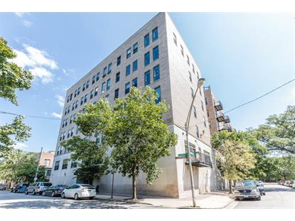 811 S Lytle Street Chicago, IL MLS# 10353966