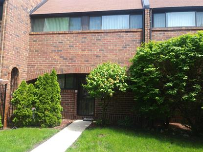 821 S Racine Avenue Chicago, IL MLS# 10397083