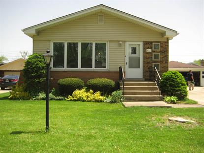 417 N Manchester Drive Chicago Heights, IL MLS# 10410350